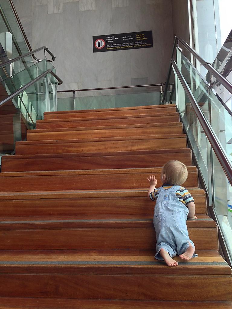 Široké schodiště s dřevěnými stupnicemi
