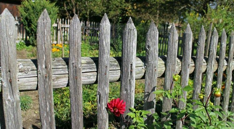 Dřevěný starý plot