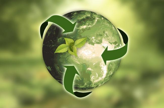 Ekologie, země, udržitelnost